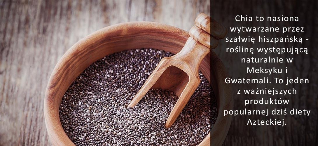 nasiona-chia-w-diecie-azteckiej Nasiona chia przepisy i pomysły na ich wykorzystanie!