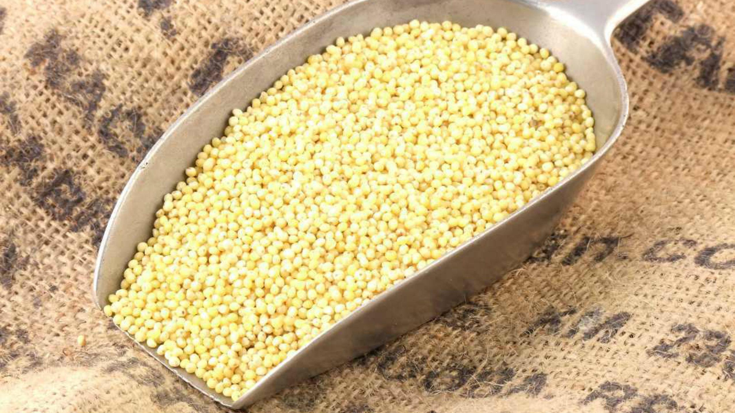 zielone-1-4 Pomysły na dania z kaszy jaglanej