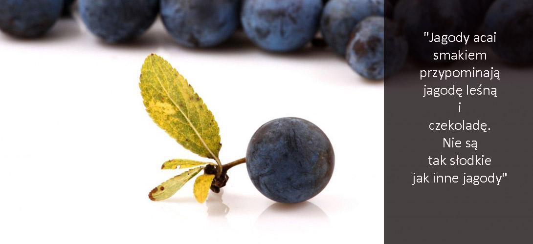 uio-kopia ACAI- JAGODY ZDROWIA I URODY! 8 powodów, dla których warto jeść jagody acai + przepis na pyszne ciasto z acai!