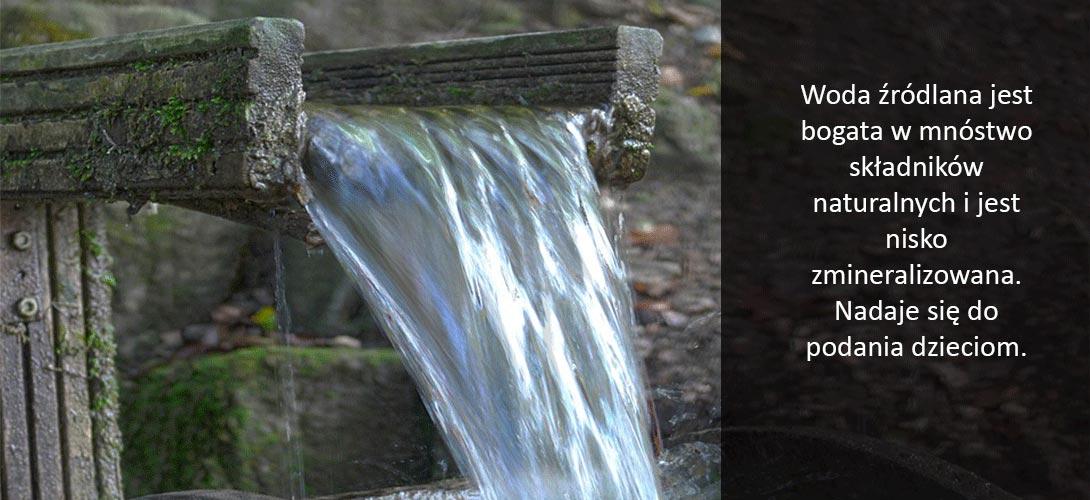 woda_zrodlana Jaki rodzaj wody jest najlepszy?