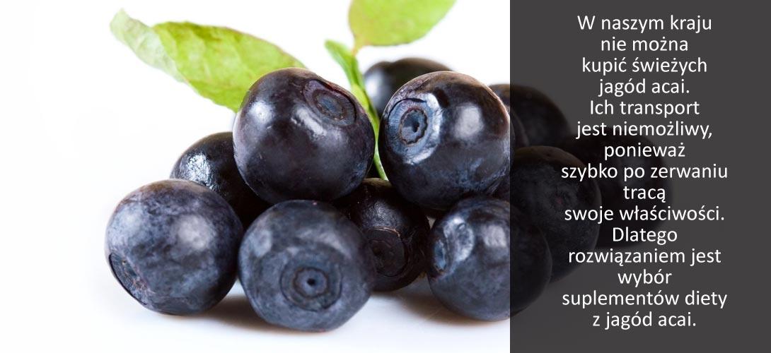 jagoda_acai Walczysz ze stresem? Chcesz mieć ładną cerę? <br> A może powinnaś włączyć do swojej diety jagody acai?