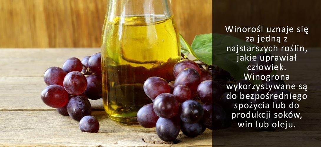 olej-z-pestek-winogorn-do-salatki Olej z pestek winogron - czy warto stosować? Zobacz przepis!