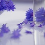 jak-czytac-sklad-kosmetykow-150x150 Zbieraj zioło - żyj zdrowo!