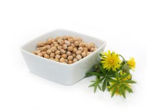 ciecierzyca-300x225 WEGAŃSKIE ŹRÓDŁA BIAŁKA. Sprawdź, jakie produkty wybierać na diecie!