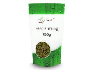 fasola-mung-300x225 WEGAŃSKIE ŹRÓDŁA BIAŁKA. Sprawdź, jakie produkty wybierać na diecie!