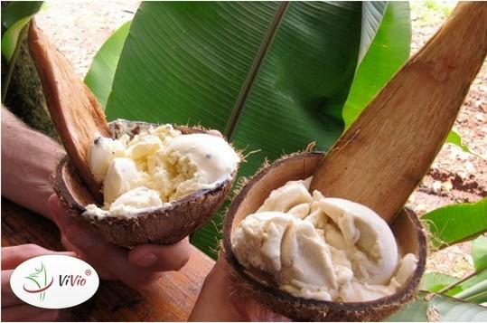 Vivio-główne Przepis na zdrowy deser. Jak przyrządzić pyszne lody na mleku kokosowym?