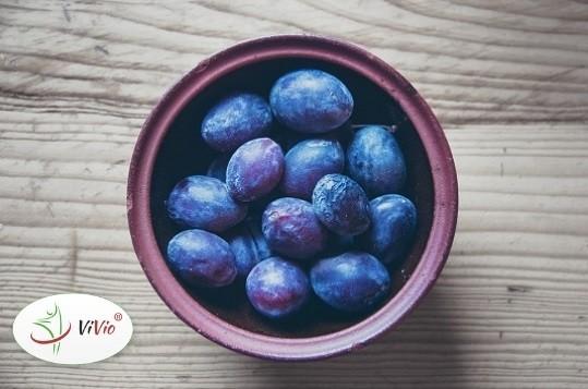 Wyróżniający-ok Suszone śliwki – poznaj ich najcenniejsze właściwości zdrowotne