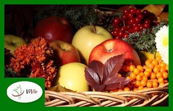 autumn-fruits-hd-wallpaper-5-Copy1 Jak wzmocnić odporność na jesień?