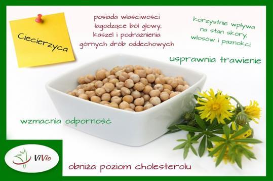 800_600_ciecierzyca-mis-Copy Hummus - zdrowa pasta z ciecierzycy
