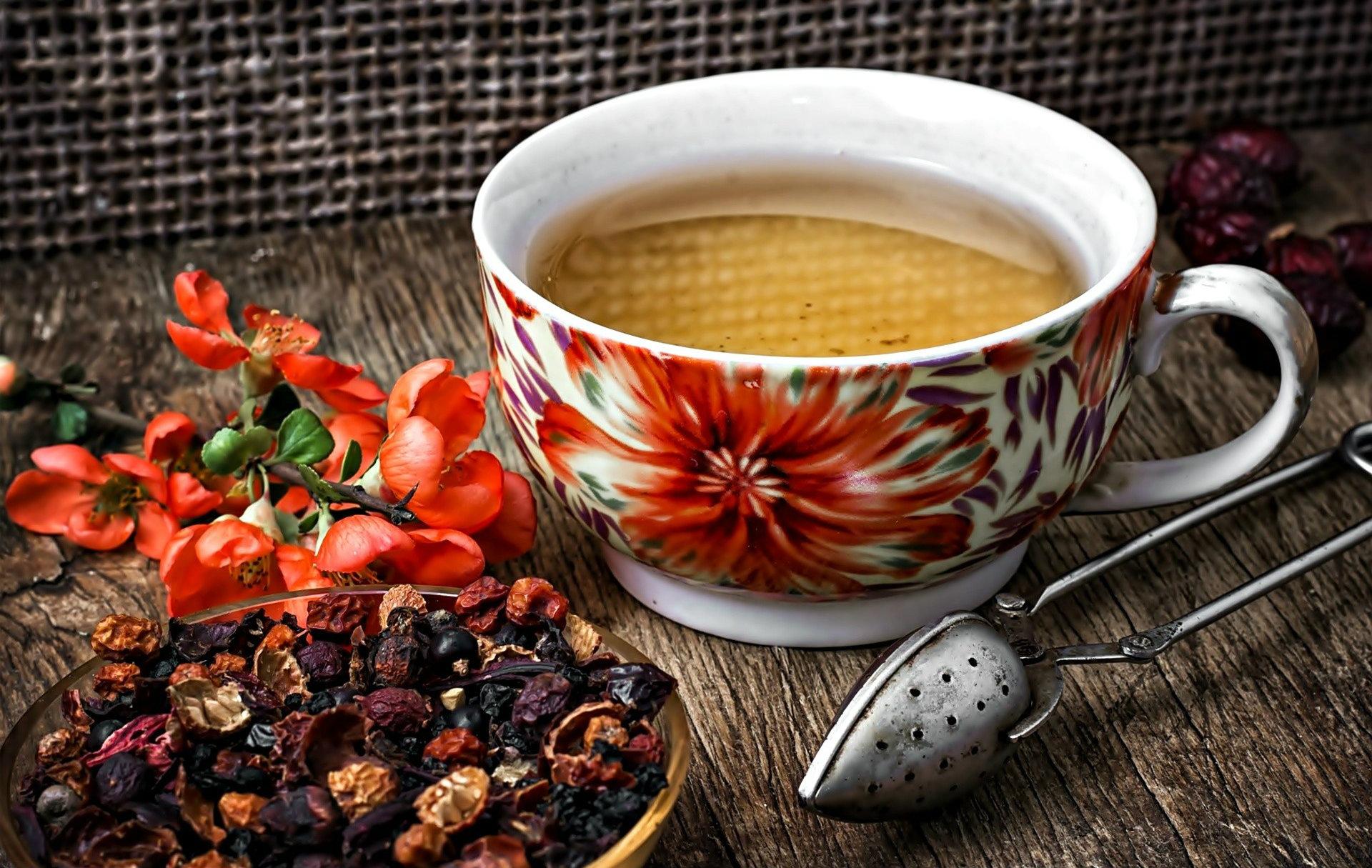 z1-4 6 powodów, dla których warto pić herbatę z czystka