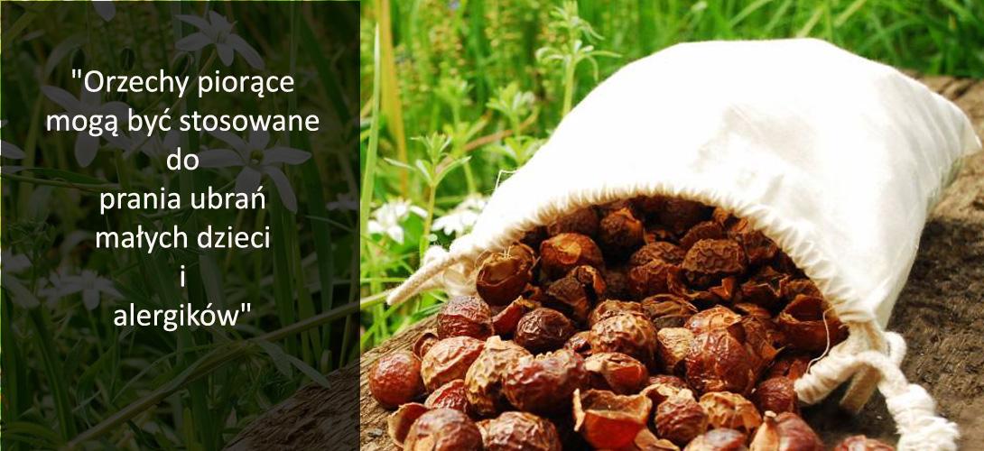 z4-8 Indyjskie orzechy piorące- zdrowa alternatywa dla chemicznych detergentów