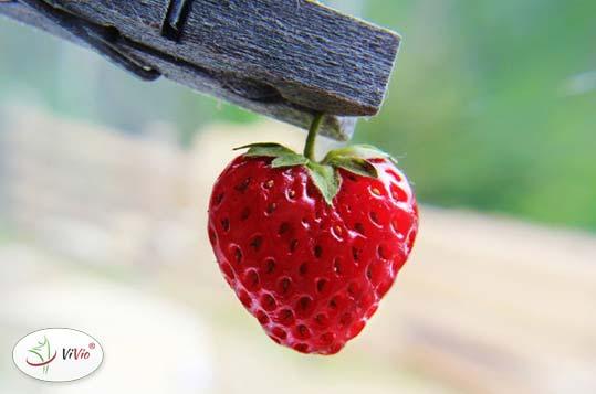 truskawka_2 Smaki dzieciństwa- kisiel truskawkowy.  A jakie jest Twoje wspomnienie z dzieciństwa? :)