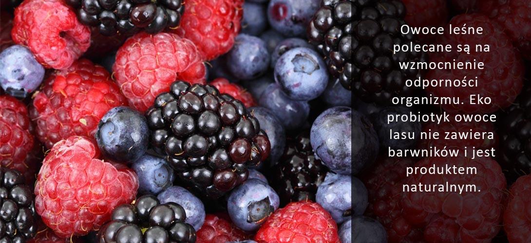 owoce-lasu Probiotyki pod lupą – co daje nam EKO koncentrat owoce lasu?