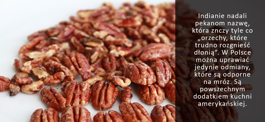 pekany-w-kuchni Orzechy pecan i przepis na sałatkę orzechowo-jaglaną!