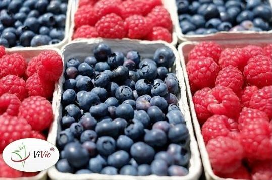 Wyróżniający-ok-1 Smak lata w zdrowej odsłonie – jak wykorzystać maliny i borówki w codziennej kuchni?