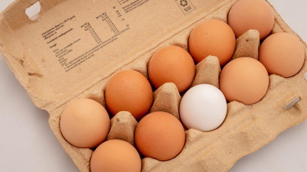 14.3-1024x575 Dieta jajeczna – czy jest skuteczna, a przede wszystkim bezpieczna dla naszego zdrowia?
